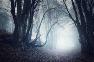Horror Mystery Walk, Horror Events bei Teamplay Events. Grusel Events, Teambuilding Events, Teambuilding , Firmenfeier, Firmenausflug, Betriebsausflug, Weihnachtsfeier